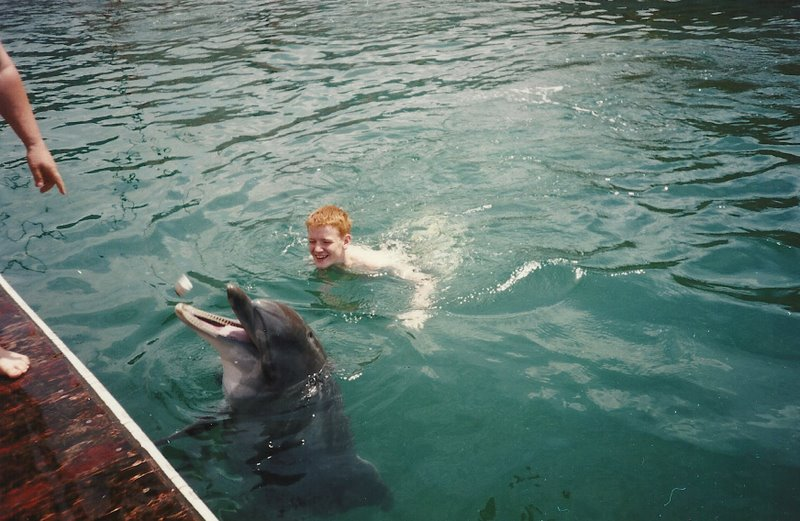 Рыжик и дельфин