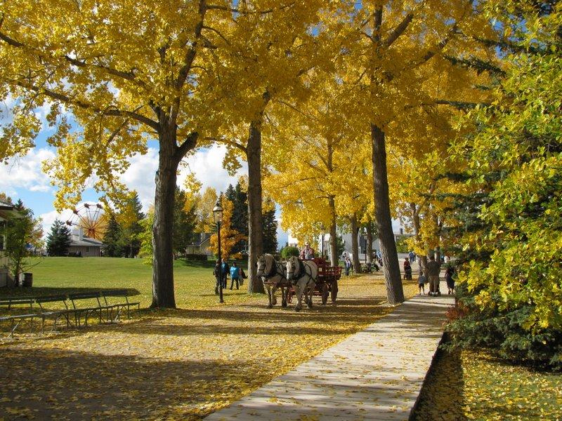 Осень в Херитедж парке