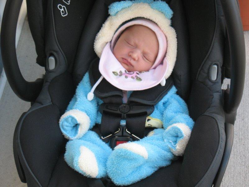 Лара любит путешествовать в Baby Carrier