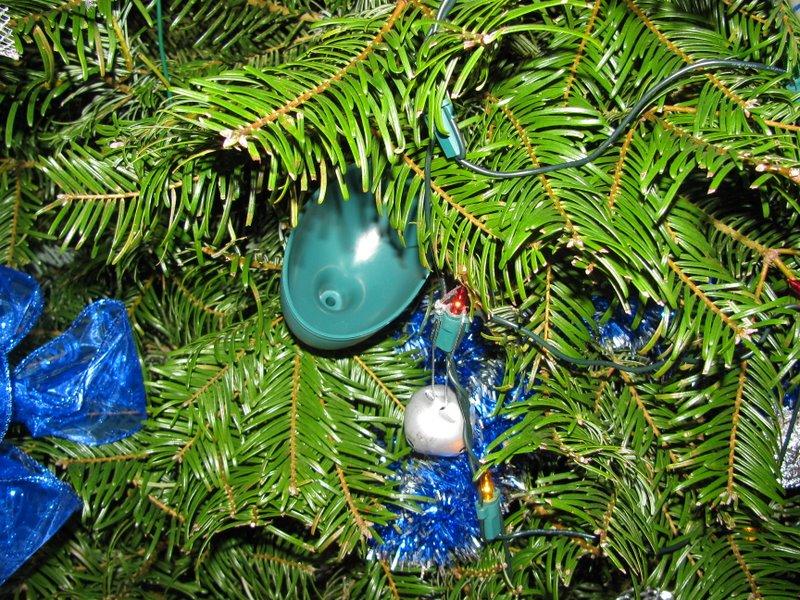 воронка для поливки на елке