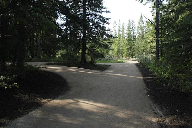 Чудная, вновь накатанная дорожка в части парка радовала глаз свежим видом.