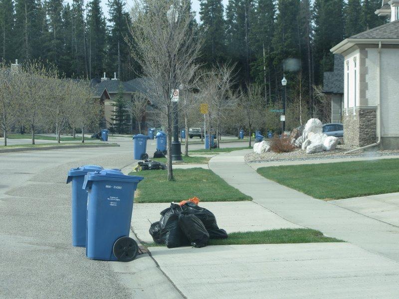 В день вывоза мусора все выствляют свои контейнеры на дорогу